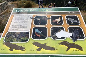 Mirador del cañón de Leza 4